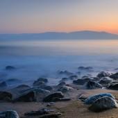 evening calmness - photo by darko ivancevic